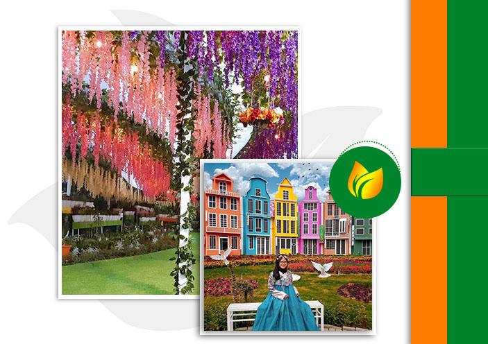 Profil Flora wisata san terra home oke